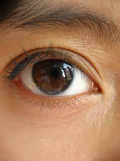 Impress Your Pals at Radwyn Apartments With These Fun Facts About Brown Eyes