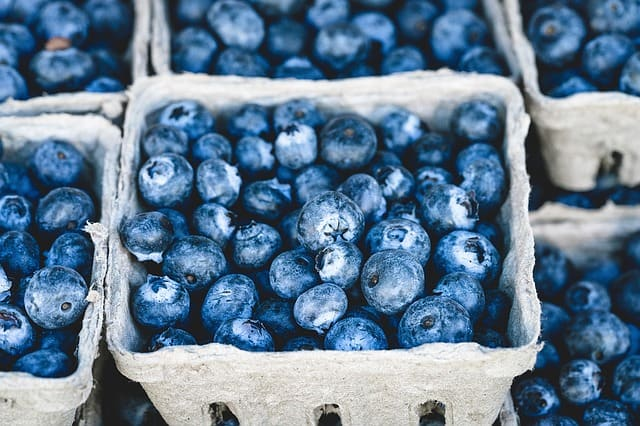 July 20-21: The Bluegrass and Blueberries Festival at Peddler's Village